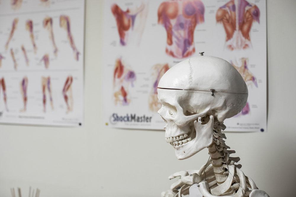 osteopathie 2